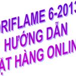 Oriflame tháng 6-2013: Hướng dẫn đặt hàng online